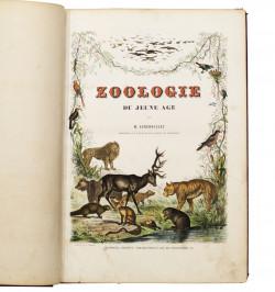 Zoologie du jeune âge ou...