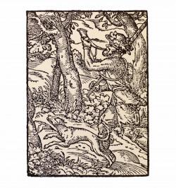 Chasse et chasseurs d'Alsace.