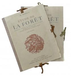 Etude de la forêt.